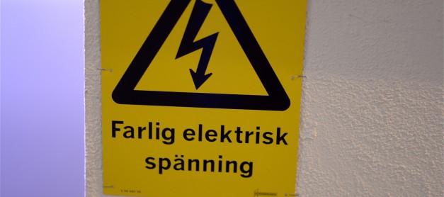 Den elektriska ålen